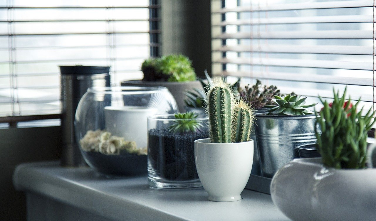 Welk glas kan je het beste plaatsen bij een stukke ruit?