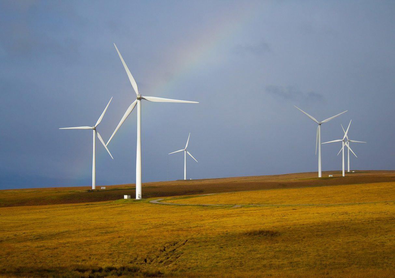 Waarom is groene zakelijke energie zo interessant?